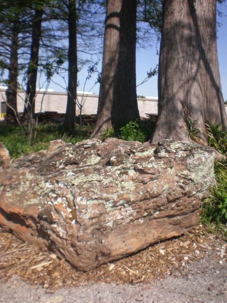 x-large-moss-boulder