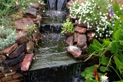waterfall-lilly-pads